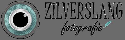 Zilverslang Fotografie